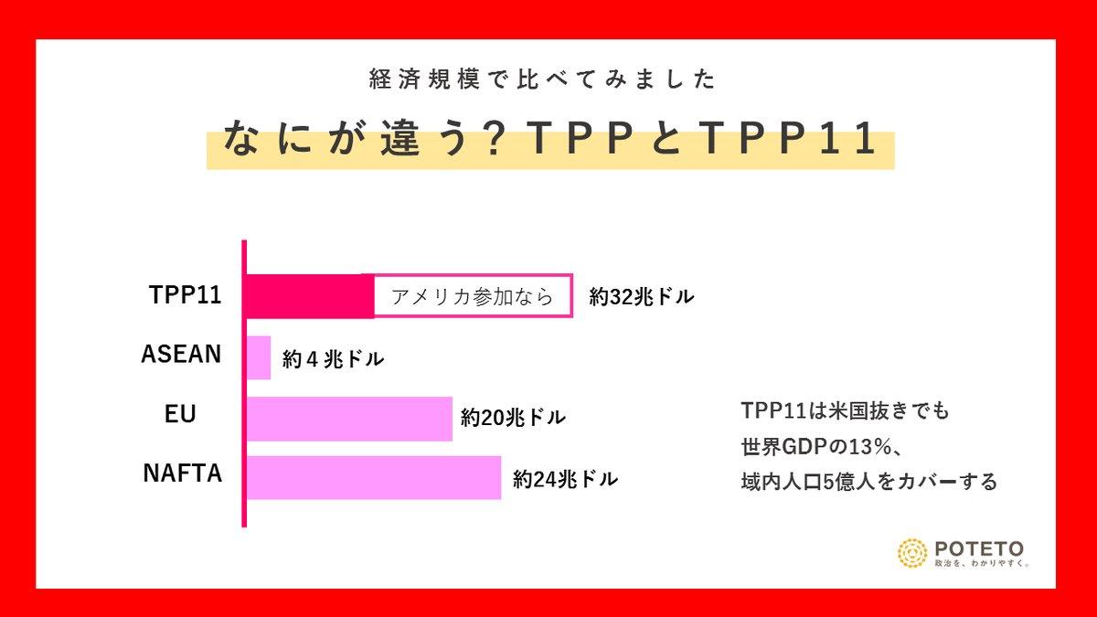 Dh8LFJzXcAAyFO2 - TPP11って?<br>TPPとの違いやこれからの展望についてざっくり解説!
