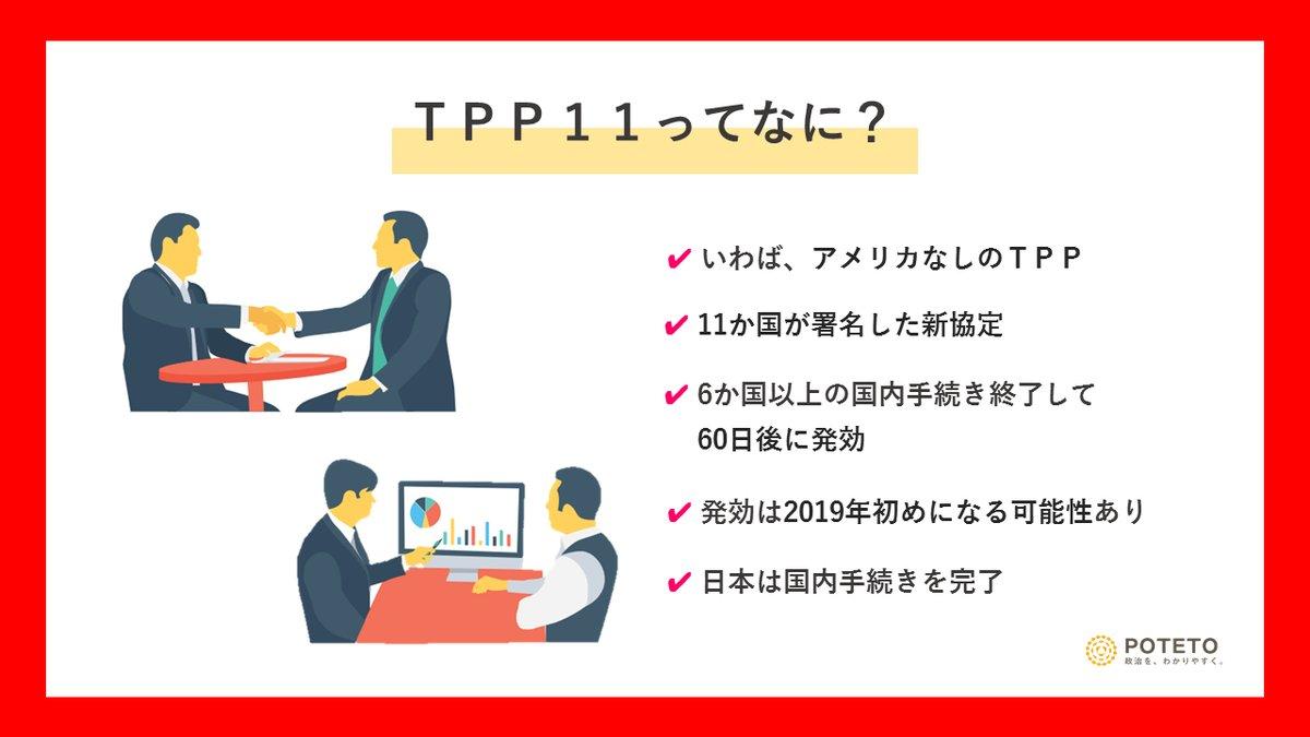 Dh8LFKCWAAEcBY9 - TPP11って?<br>TPPとの違いやこれからの展望についてざっくり解説!