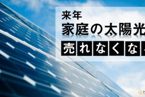 5621deba8a18b839c7a4321764bb05e8 3 300x200 - 【特集】来年から、太陽光パネルが売れなくなる?