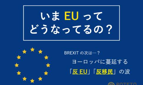 706a101680053291e6ba961ded668877 486x290 - EUに広がる「反EU」「反移民」の波