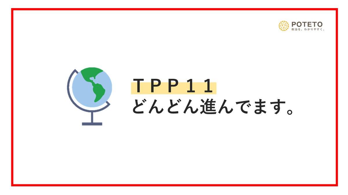 Dh8LFJPXkAAxRJb - TPP11って?<br>TPPとの違いやこれからの展望についてざっくり解説!