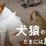 Dp1SUkuWkAIXRFS 150x150 - 入試不正、昭和大でも