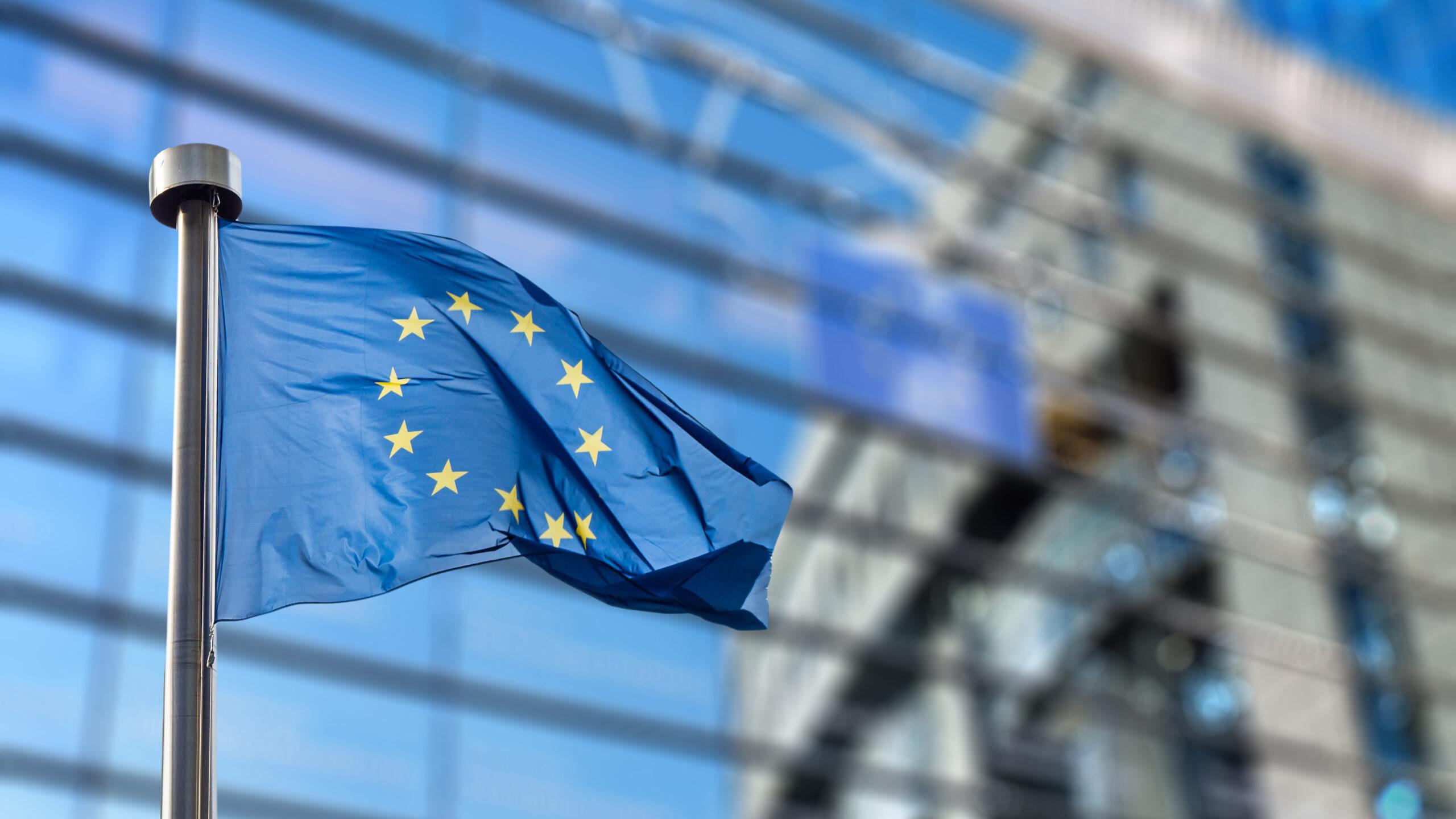 AdobeStock 93494284 scaled - 欧州議会選挙(前編)【POTETOワード】
