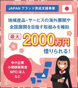 ae6592c55b94872a04527972ba5cd09b 266x300 - JAPANブランド育成支援事業1-ol-01